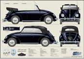 VW Beetle Karmann Cabriolet 1953-55